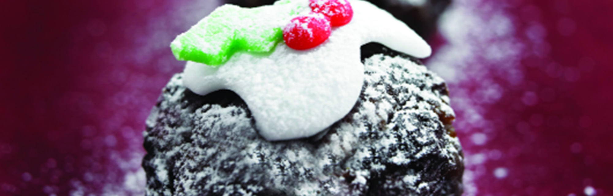 Header - Christmas Pud 530